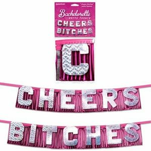 🆕 Cheers Bitches Bachelorette Party Banner